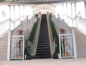 Escalator Manufacturer with Eco Energy-Saving System pictures & photos