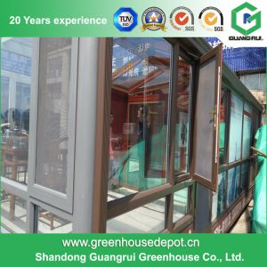 Modern Design Walk-in Glass Garden Greenhouse pictures & photos