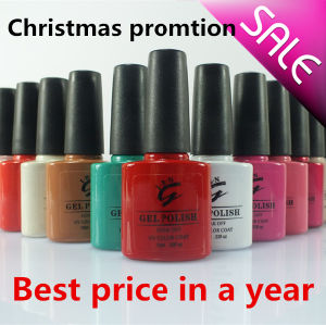 Ibn Gel Nail Polish Promotion with Big Discount pictures & photos