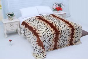 Hot Sale 100% Polyester Raschel Blanket Sr-B17305-11 Soft Printed Mink Blanket pictures & photos