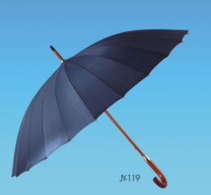 Manual Open Pongee 16k Straight Umbrella (JY-119) pictures & photos