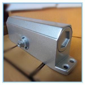 Automatic Adjustable Aluminium Alloy Door Closer (DC-06) pictures & photos
