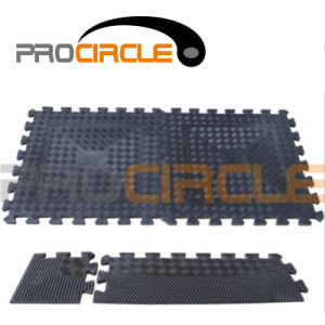 Crossfit Multi Purpose Interlocking Rubber Mat for Gym Floor (PC-FT1024-1025) pictures & photos