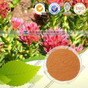 GMP ISO 100% Natural Rhodiola Rosea Extract (free sample) Rosavin 1%-3%+Salidroside 1% HPLC pictures & photos
