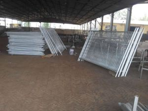 Welded Wire Mesh, Rion Mesh, Chain Link Fence pictures & photos