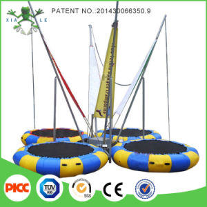 Euro Jump Bungee with Cheap Price pictures & photos