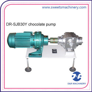 Different Model Chocolate Feeding Pump Chocolate Dosing Pump for Chocolate Mass pictures & photos
