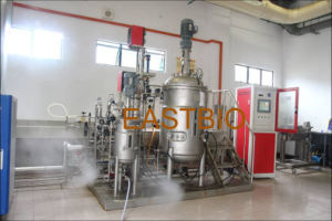 Eastbio® Gujt Series Pilot Scale Mechanical Stirred Stainless Steel Fermenter pictures & photos