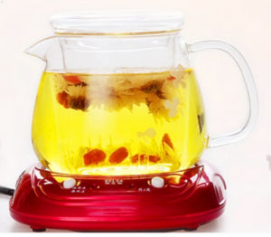 Hot Selling in European with Filter and Handle Juice Pot Tea Pot Tea Kettle pictures & photos