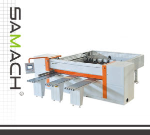High-Quality Computer Controlled Woodworking Panel Saw (RCJ2700) pictures & photos