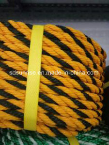 Tiger PE Rope Yellow with Black pictures & photos