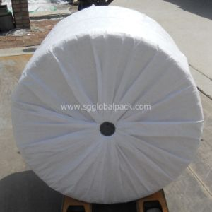 High Quality Woven Sack Tubular Fabric in Roll pictures & photos