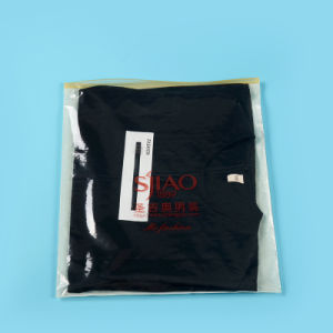 High Quality Printed Ziplock Plastic Bags for Clothing (FLZ-9220) pictures & photos