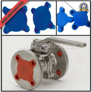 Bolted Hole Plastic Flange Covers and Protectors (YZF-C48) pictures & photos