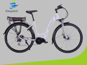 2017 700c Wheel Size Newest Electric Bike (with Certificate) pictures & photos