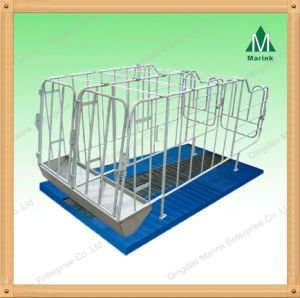 The Whole Hot DIP Galvanized Gestation Stall pictures & photos