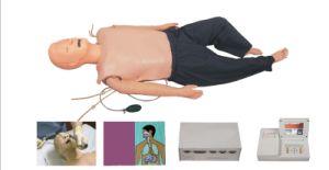 ALS Training Manikin, CPR Manikin (Jc/ALS800)