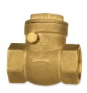 Aperture Threaded Brass Horizontal Type Check Valve Copper Te-70 pictures & photos