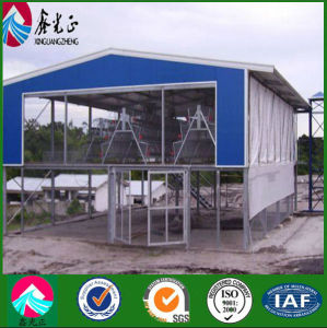 Automatic Control Low Cost Poultry House/Shed pictures & photos