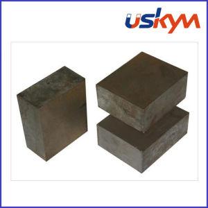 Block Samarium Cobalt Magnet (F-001) pictures & photos