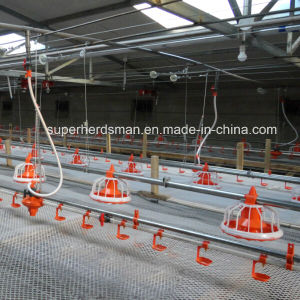 Whole Set Automatic Poultry Farming Equipment for Chicken pictures & photos