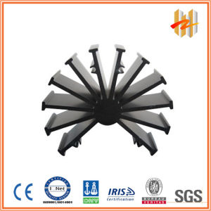 Aluminum Extruded Heat Sink with Black Anodized Surface (ZW-HS-004)