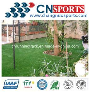 Cheap Artificial Grass for Garden pictures & photos