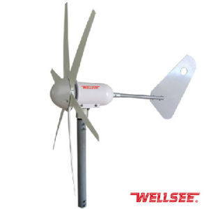 Wellsee Wind Turbine (squirrel-cage small Squirrel-cage wind turbine) (WS-WT 300W)