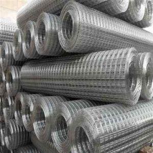 Carbon Steel Galvanized Welded Wire Mesh / Galvanized Welded Mesh (XM-04) pictures & photos