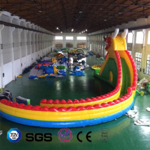 Coco Water Design Inflatable Dragon Slide LG9087 pictures & photos