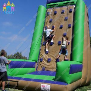 Ce Inflatable Rock Climbing pictures & photos