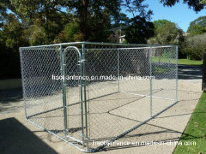 Small Square Dog Kennel Runs & Enclosures pictures & photos