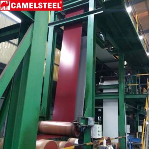 Prepainted Galvanized Steel Coil PPGI From Camelsteel pictures & photos