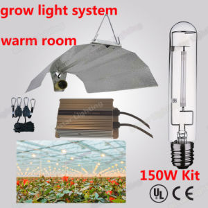 Grow Light Electric Ballast High Pressure Sodium Lamp150W pictures & photos