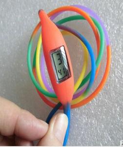 New Waterproof Silicone Wrist Watch with Rainbow Wristband