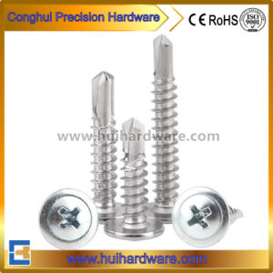 Pan/Flat/Truss/Flange/Hex/Wafer Head Self Drilling Screws pictures & photos