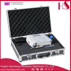 HS08AC-Ska Airbrush Kit Compressor Nail Art Tattoo with Dual Action Paint Sprayer Gun Set pictures & photos