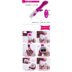 10 Speeds Dual Vibration G Spot Vibrator Sex Toys for Woman pictures & photos
