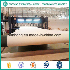 100% Synthetic Bob Felt for Forming /Press/Drying Section pictures & photos