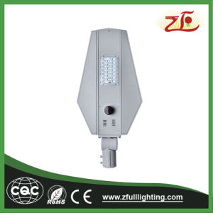20W LED Light with Solar Panel Street Light pictures & photos
