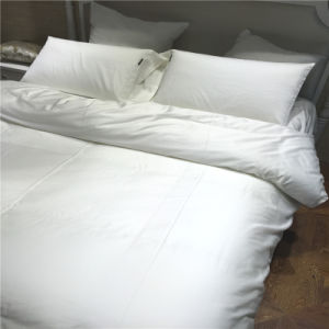 Bed Sheet Set Bedding Hotel Collection Cotton Quilt Set for Bedroom pictures & photos