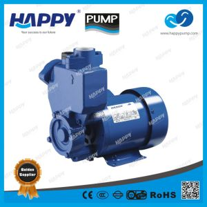 Self-Priming Peripheral Pump (PS) pictures & photos