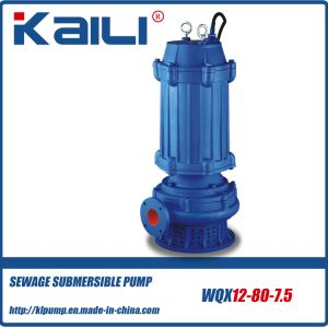 WQX Sewage Submersible Water Pump (WQXD15-10-0.75) pictures & photos