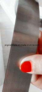 Professional Manufacturer for Printing Doctor Blade pictures & photos