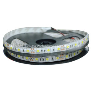 Blue Color IP65 SMD5050 Chip 60LEDs 14.4W DC12V LED Strip pictures & photos