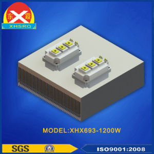 IGBT Heat Sink Aluminum Extruded Heat Sink for Industrial Equipment pictures & photos
