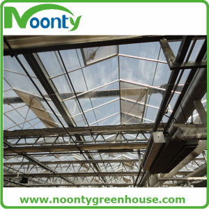 Multi-Span Arch PC Greenhouse pictures & photos