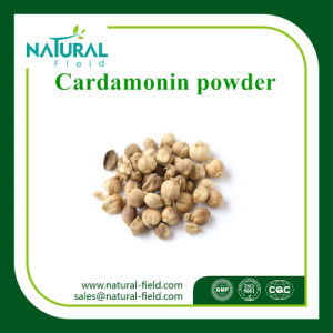 100% Natural Plant Extract Cardamom Extract Cardamonin 98% pictures & photos
