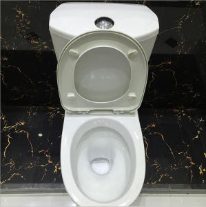 Ceramic Two Piece Toilet Set for Bathroom pictures & photos