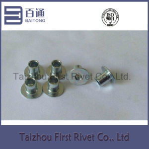 6.35X7.1mm White Zinc Plated Flat Head Fully Tubular Steel Rivet pictures & photos
